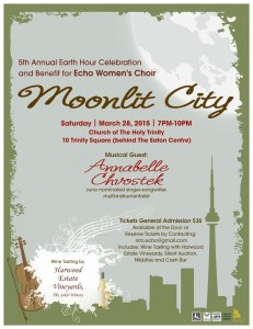 poster for Moonlit City concert